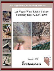 Las Vegas Wash Reptile Survey Summary Report, 2001-2003
