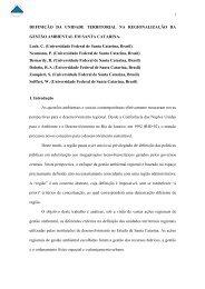 DEFINICAO DA UNIDADE TERRITORIAL NA ... - UFSM