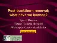 Post-buckthorn removal; what have we learned?