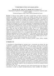Produtividade do Fósforo em Eucalyptus globulus Lobo do ... - ESAC