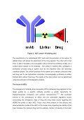 Antibody-Drug Conjugates Carbon-14 Radiolabeling ... - Almac - Page 6