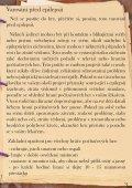 Český manuál - TOPCD.cz - Page 3