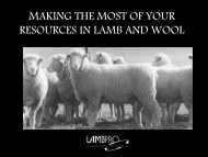 MAKING THE MOST OF YOUR RESOURCES IN LAMB AND WOOL