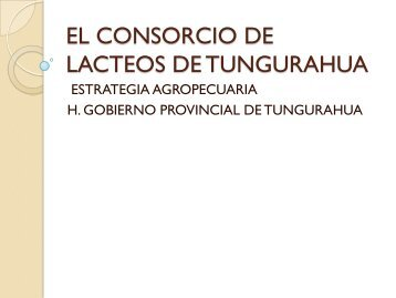 EL CONSORCIO DE LACTEOS DE TUNGURAHUA - Rimisp