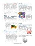 Mitos sobre la obesidad - Page 4