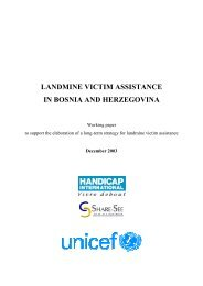Landmine victim assistance in Bosnia and Herzegovina - Handicap ...