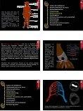 Die Gefäße des menschlichen Körpers - Page 3
