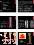 Die Gefäße des menschlichen Körpers - Page 6
