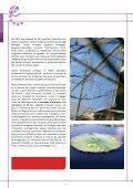 DATAR SRI_PLAQUETTE_TBD.pdf - Europe en France, le portail ... - Page 6