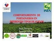 Comportamiento de portainjertos en diferentes tipos de suelos - INIA