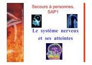 Le système nerveux et ses atteintes - SDIS14