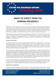 WHAT TO EXPECT FROM THE GERMAN PRESIDENCY