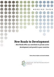 How Nordic DFIs can contribute to private sector development and ...