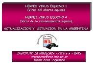 Herpes Virus Equino