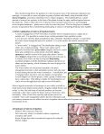 A Beautiful Landscape on Less Water? - Manatee County Extension ... - Page 2