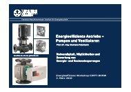 Energieeffiziente Antriebe (Felsmann)