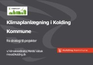 Kolding Kommune - Regions 202020
