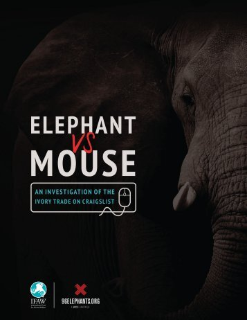 IFAW-craigslist-ivory-report-2015