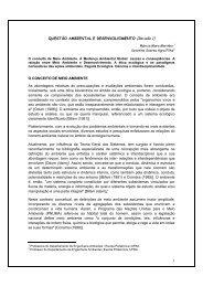 QUESTÃO AMBIENTAL E DESENVOLVIMENTO (Revisão 1 ... - IFBA