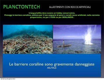 Catalogo rocce artificiali