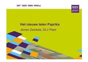 Het nieuwe telen Paprika - Energiek2020
