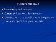 Mojave Tui Chub FWS - Desert Managers Group