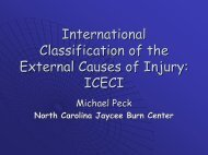 International Classification of the External Causes of Injury: ICECI