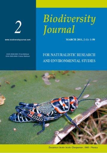 Fontana P., 2011. Mexican Melanoplinae. Biodiversity Journal, 2: I-II.