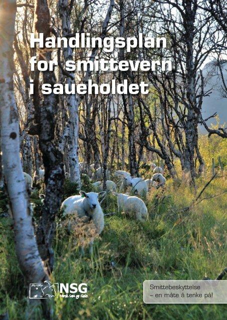 vanlig PDF-fil - Norsk Sau og Geit