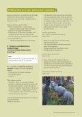 vanlig PDF-fil - Norsk Sau og Geit - Page 7