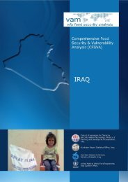 Comprehensive Food Security and Vulnerability Analysis in Iraq