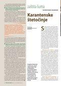 Rogovlje i rogovi - Hrvatske šume - Page 6