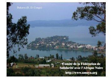 Coltan: Minerais du Sang des Enfants Congolais - CRAN