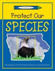 Endangered and Threatened Species Coloring Book - Iowa ...