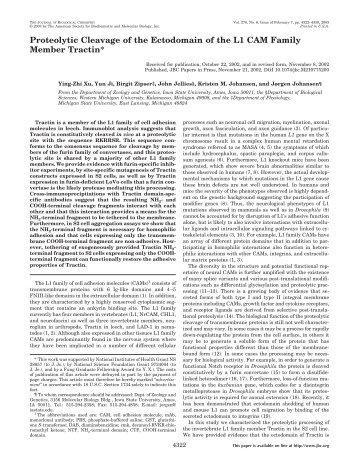 Xu et al., J. Biol. Chem. 278 - Department of Biochemistry ...