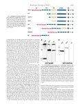 Xu et al., J. Biol. Chem. 278 - Department of Biochemistry ... - Page 4