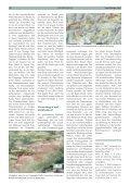 Steinwild im Lechquellengebiet - Vorarlberger Jägerschaft - Page 3