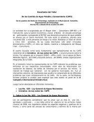 CODA Resultados del Taller CAPS 05 y 061007.pdf