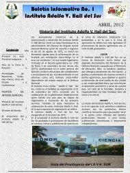 Boletín Informativo Instituto Adolfo V. Hall del Sur - Ministerio de la ...