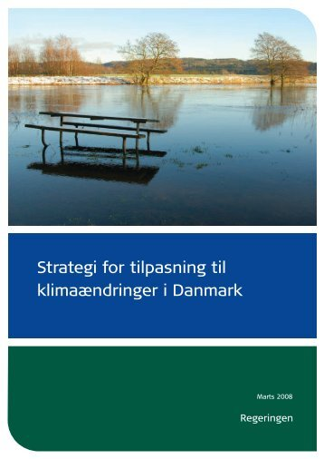 Regeringens strategi for tilpasning til klimaændringer i Danmark
