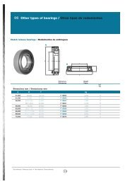 06 Other types of bearings / Otros tipos de rodamientos