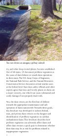 Dam Owner's Guide To Plant Impact on Earthen Dams - Federal ... - Page 4