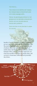 Dam Owner's Guide To Plant Impact on Earthen Dams - Federal ... - Page 7