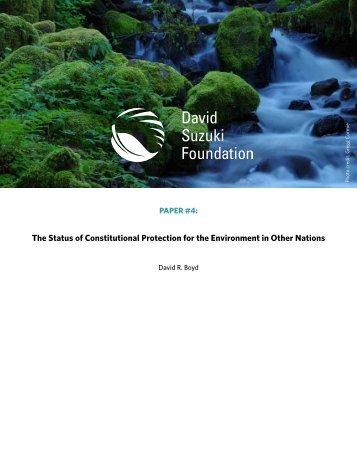 DSF White Paper 4