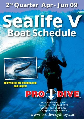 Whale Watching - Online Scuba Diving Booking System