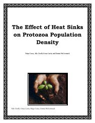 The Effect of Heat Sinks on Protozoa Population Density - The Little ...