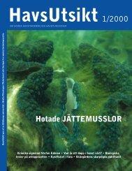 HavsUtsikt nr 1,2000 - Havet.nu