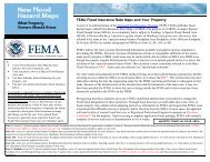 FEMA Flood Insurance Rate Maps and Your Property - Storey County!