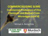 COMMERCIALISING SLIME Commercial Production of Fine ...