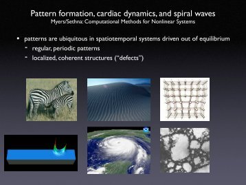 Pattern formation, cardiac dynamics, and spiral waves
